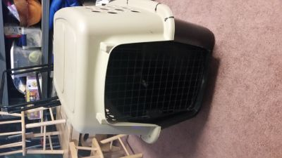 Plastic travel dog kennel