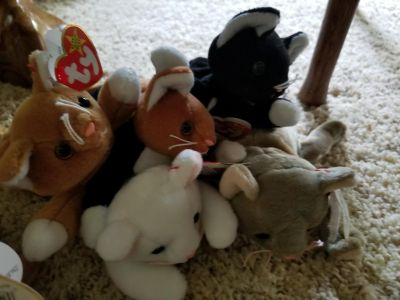 Vintage 1990s cat beanie baby collection