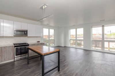 Expansive 3bd.2bth in Condo Quality New Construction Old Irving Park Property