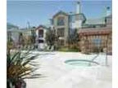 1bed1bath In San Jose Pool Spa Balcony Gym Ac