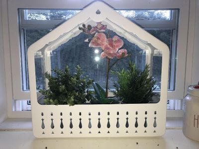 Metal and glass terrarium greenhouse with fake plants