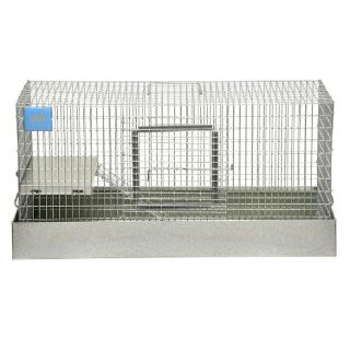 Animal cage FREE  FREE  HURRY IT IS AT THE CURB