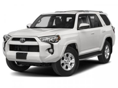 2019 Toyota 4Runner Limited (Gray)