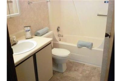 Bright Gainesville, 1 bedroom, 1 bath for rent. Washer/Dryer Hookups!