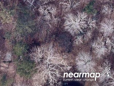 6 Bed 5.1 Bath Foreclosure Property in Deatsville, AL 36022 - Dogwood Trl