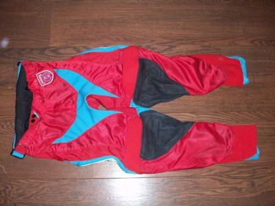Sell TLD TROY LEE DESIGNS SE PRO CORSE Pant Size 30 RED BLUE motocross mx riding gear motorcycle in Lake Elsinore, California, United States, for US $85.00