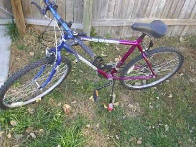 $15 Roadmaster USA Mountain Climber Bike