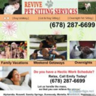 AFFORDABLE PET SITTINGDOG WALKING SERVICES