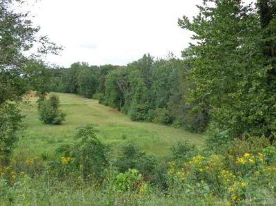 905-913 Jamestown Road Morganton, Approx. 25 acres bordering