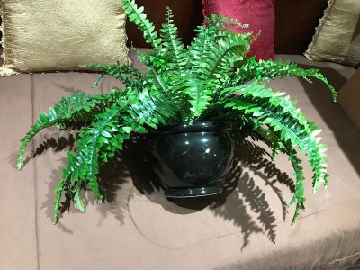 Large Artificial Fern Plant