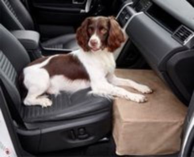 Orvis front seat extender for dog