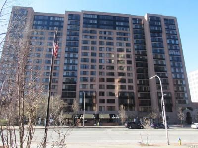 1 Bed 1 Bath Foreclosure Property in White Plains, NY 10606 - Martine Ave Apt 203
