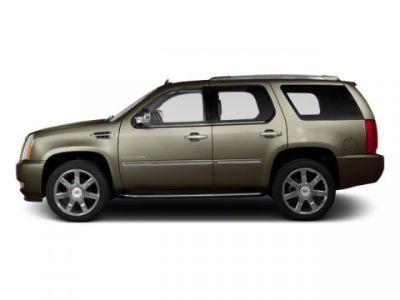 2012 Cadillac Escalade Premium (Mocha Steel Metallic)