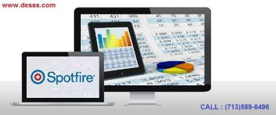 Spotfire Consulting Services Company