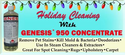 Carpet Cleaner  Stain Remover