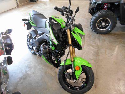 2018 Kawasaki Z125 Pro KRT Edition Sport Motorcycles Belvidere, IL