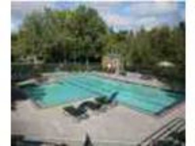Private Studio In Cedar Mill Pets Ok Gym Pool