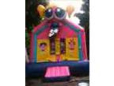 Rent A Water Slide Moonwalk Or Bounce House