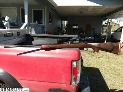 Want To Buy: Gun project light gunsmithing work.