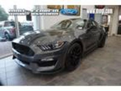 2019 Ford Mustang Shelby GT350 900A