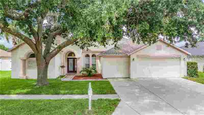 22451 Magnolia Trace Boulevard LUTZ Four BR, One or more