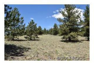 Wagon Wheel Hartsel, A beautiful two acre lot with trees and