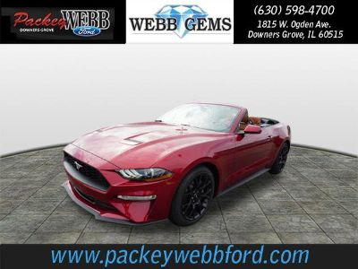 2019 Ford Mustang EcoBoost Premium (Ruby Red)