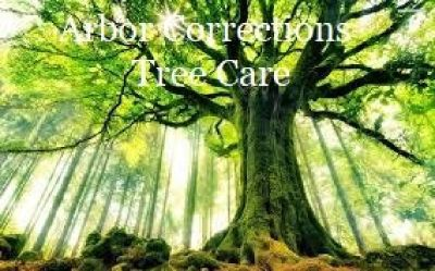 Tree Care Services from ARBOR CORRECTIONS