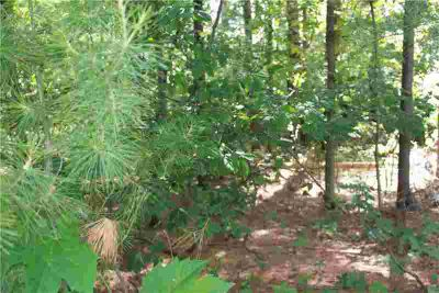 3113 Ingalls Road Menomonie, Wood lot in desirable River