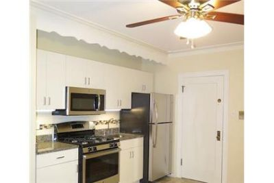 Pet Friendly 2+1 Guesthouse in Chicago