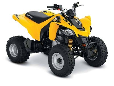 2017 Can-Am DS 250 Sport ATVs Island Park, ID