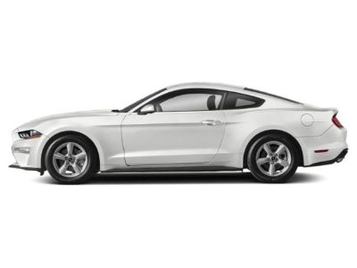 2019 Ford Mustang GT Premium Fastback (Oxford White)