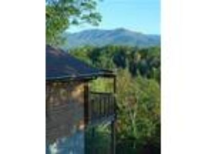 Cuddler's View Private and Secluded Honeymoon Cabin - Cabin