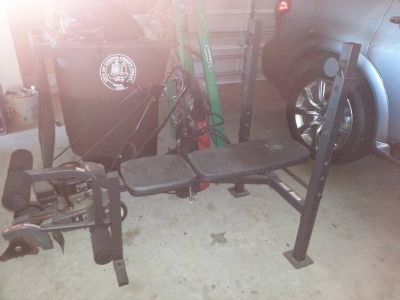 Golds Gym Weight Bench plus weights