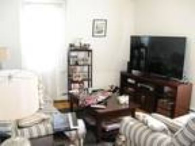 Sunny Renovated Two BR Literally in Davis Square! Cat Friendly!