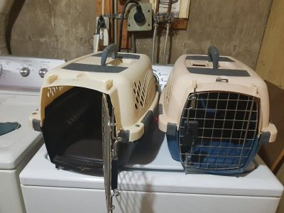 2 cat carriers