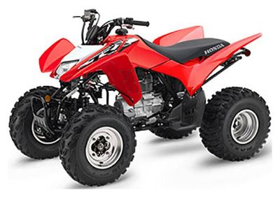 2019 Honda TRX250X Sport ATVs Greeneville, TN