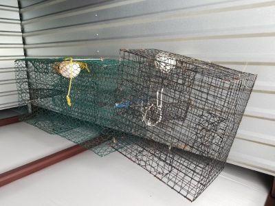 3 Crab Cages