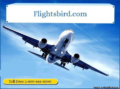 Book cheap flights from Morrisville to Chicago at $230 | Flightsbird