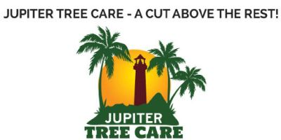 Find High Quality Tree Trimming & Removal In Jupiter, FL - Jupiter Tree Care