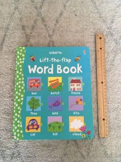 Large Usborne Lift-the-Flap Word Book - Great for emerging readers!