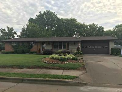 1060 Lottes Perryville Three BR, Love Flowers? Then feast your