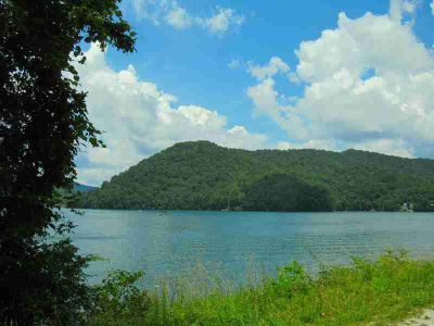 00 Lake Vista Cir Topton, Mountian lot located in an