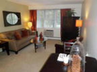 Luxury Apartment, Near BU/Longwood Medical, Incl HT/HW/Gas, Avail NOW