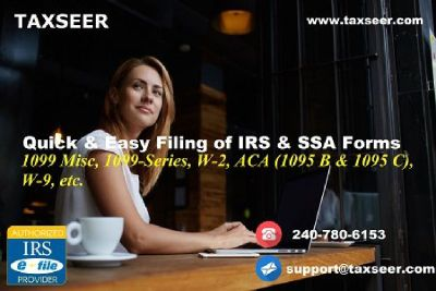 TaxSeer.com is a money- and time-saving ally for small business!