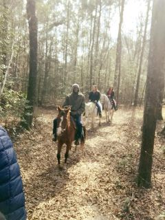 TRAIL RIDING!!