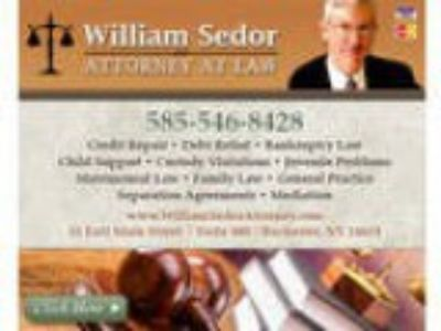 William Sedor Attorney