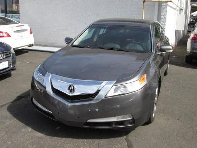 2010 Acura TL w/ Technology Package (Palladium Metallic)