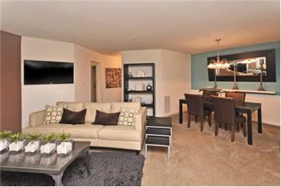 3 bedrooms Apartment - Large & Bright