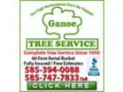 Ganoe Tree Service